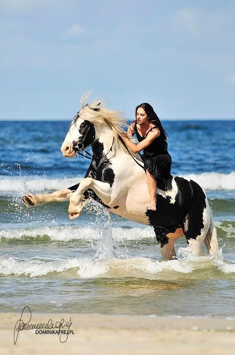 Coloriage de cheval avec sa cavaliere www - Coloriage de cavaliere ...