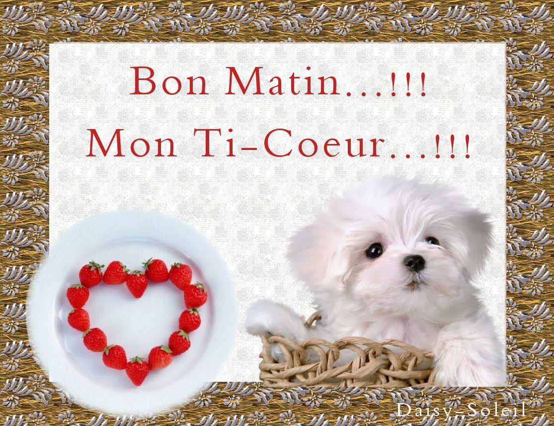 Bon Matin Mon Ti Coeur